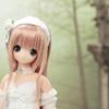 ALISA/Nostalgic Story Collection_L_001