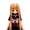 koron_5th_012