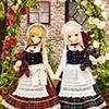 Rose Red Mio_002