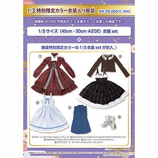 1/3 特別限定カラー衣装入り服袋